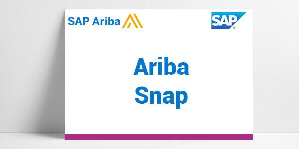 SAP ariba snap, consultants sap ariba, solutions digitales achats, solution digitales achats ETI